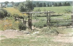 Garden space of organic farmland in Lanark, Ontario